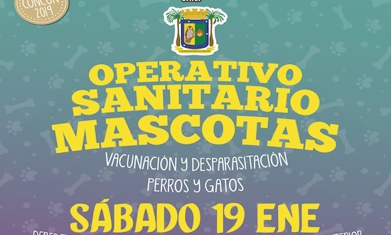 MUNICIPIO DE CONCÓN INFORMA SOBRE PRÓXIMO OPERATIVO DE MASCOTAS: SÁBADO 19 DE ENERO