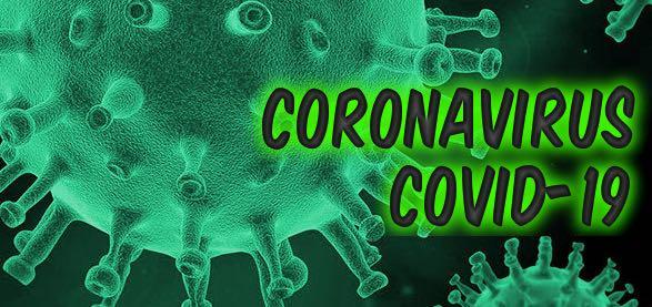¿Por qué no es posible producir una vacuna para Covid-19 en Chile?
